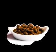 Café grain du Pérou